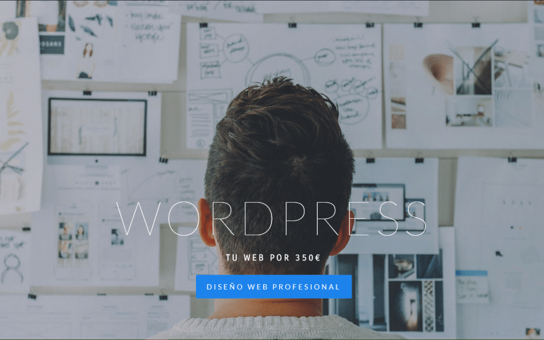 Diseño Web Profesional WordPress